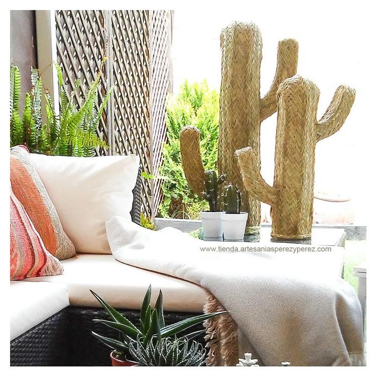 Natural esparto cactus