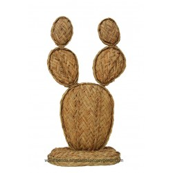Cactus chumbera de esparto  nº 1
