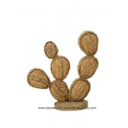 Prickly pear of esparto nº 3