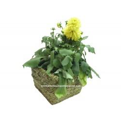 Vaso quadrado com estrutura de forjamento em esparto natural