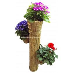 Cactus cache-pot en sparte avec trois pots