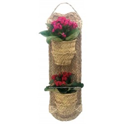 Wall vertical double plant pot model arte