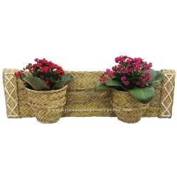 Vaso de parede horizontal para 2 vasos de flores