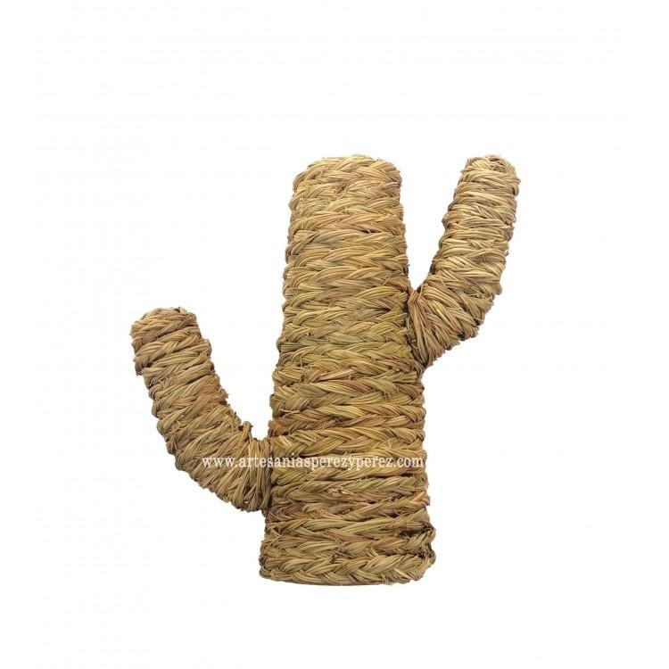 Cactus en sparte naturel créatif